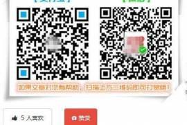 Nana主题升级到2.04版本 增加赞赏等功能