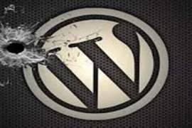 如何安装无在线升级更新功能的WordPress主题