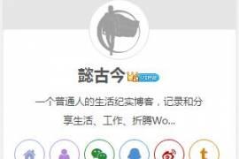 Nana主题和Blogs主题添加站长信息栏小工具教程